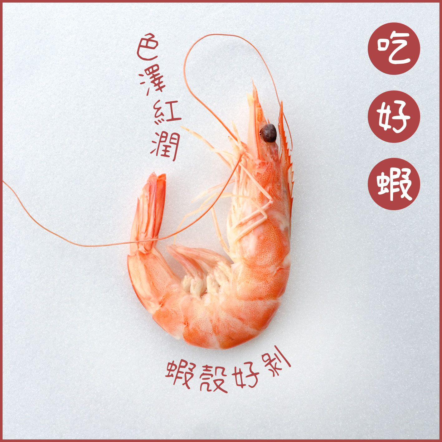煮好後的白蝦