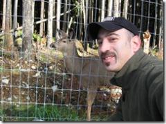 Friendly Deer 1-24-07_09