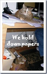 We hold down papers